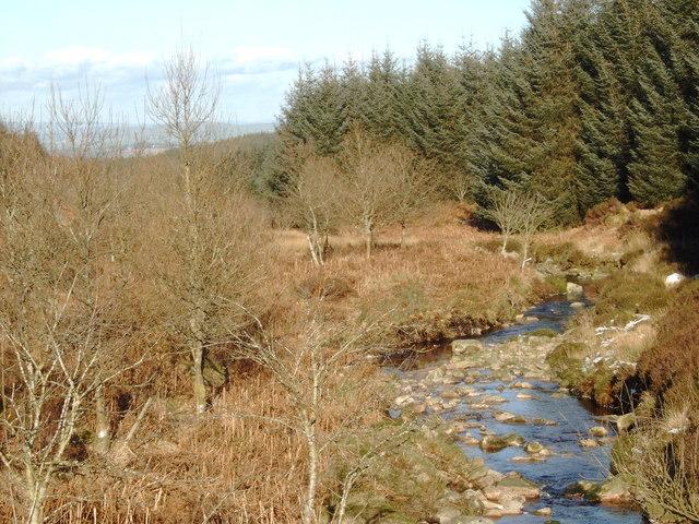 Kinharvie Burn, from the forestry road bridge