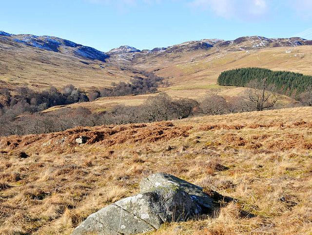 Moorland and forestry plantation in upper Glen Beich