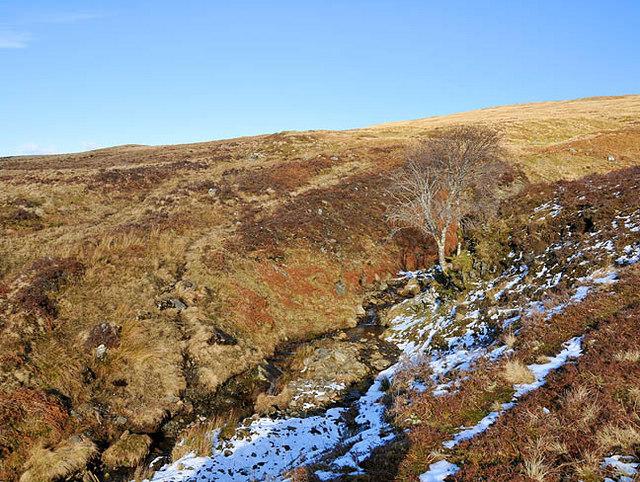 Moorland and Burn in upper Glen Beich
