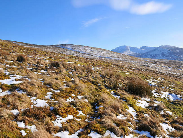 Moorland on the slopes of Sron Mhor, Glen Beich