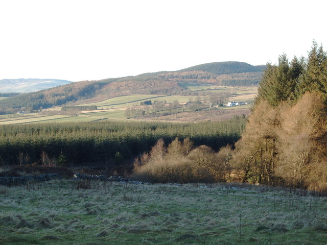 Clearing in the forest at Hawkhill