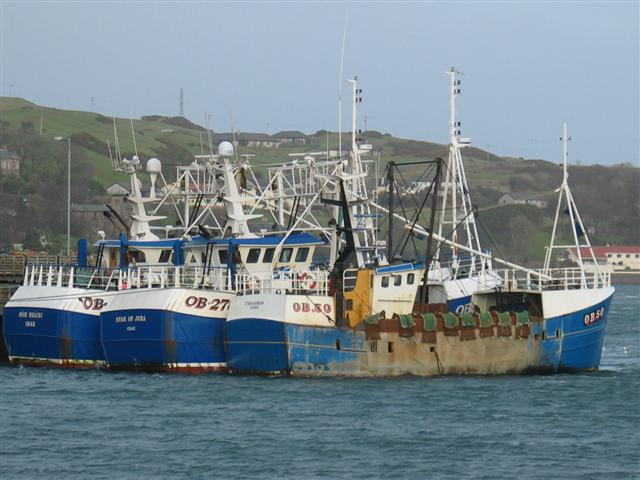 Oban fishing boats Campbeltown harbour.