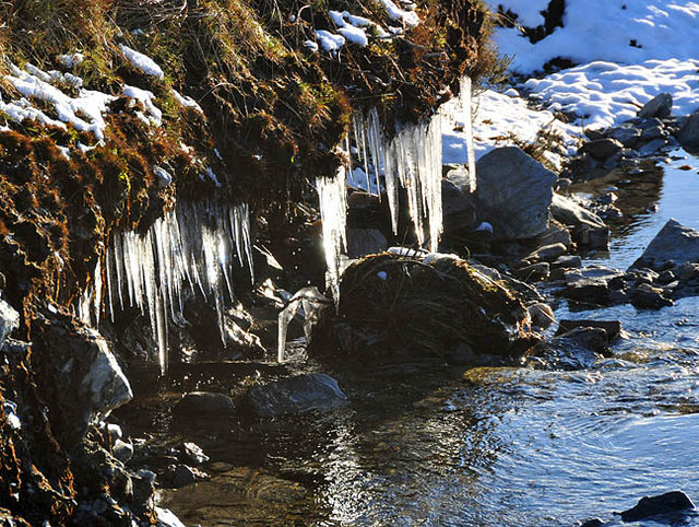 Icicles at the side of the burn