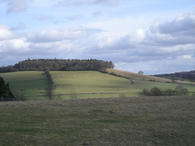 Ash Coppice hill from Windmill Hill