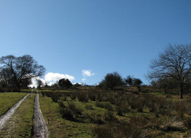 Track ascending Llandefalle Common