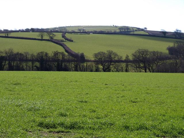 Valley near Treburtle