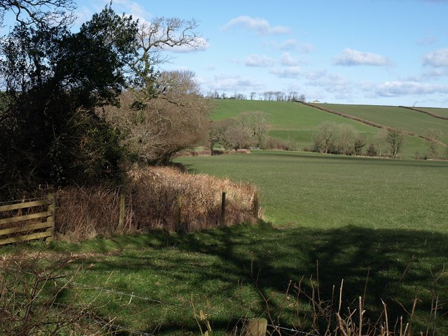 Field in the Ottery valley