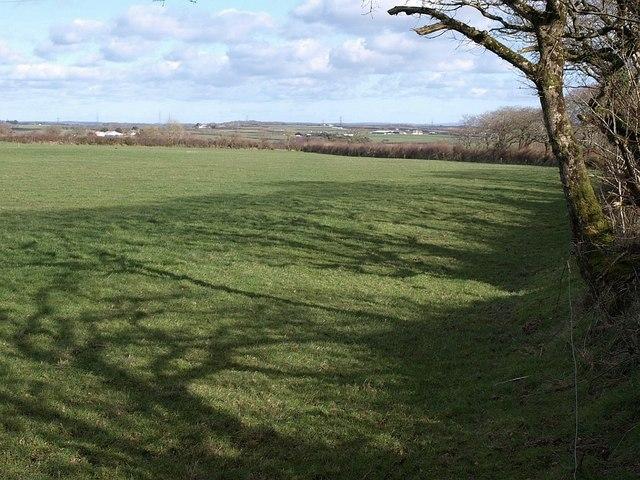 Field at Delabole Farm