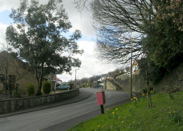 Springwood Drive - Copley