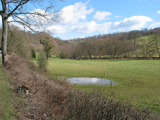 Small pool on Monnow Meadows