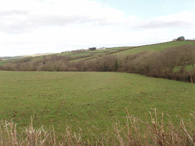 Fields near Thinwood Farm