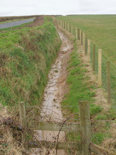 Ditch and fence, Willowbrook Farm
