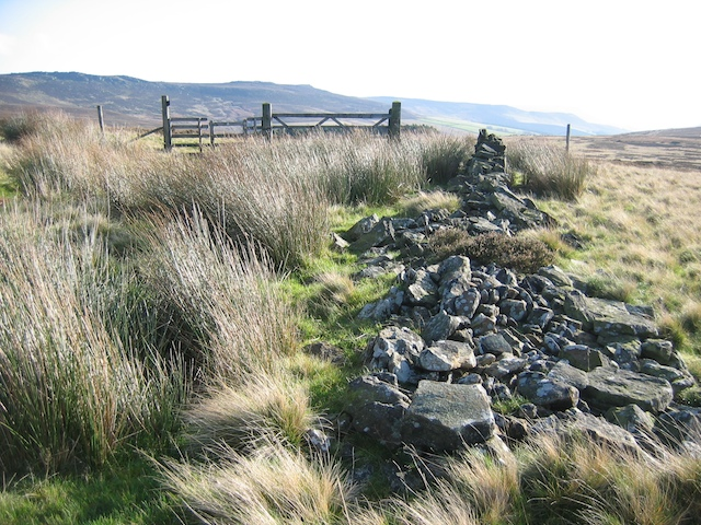 Old wall, gate and stile above Derwent Reservoir