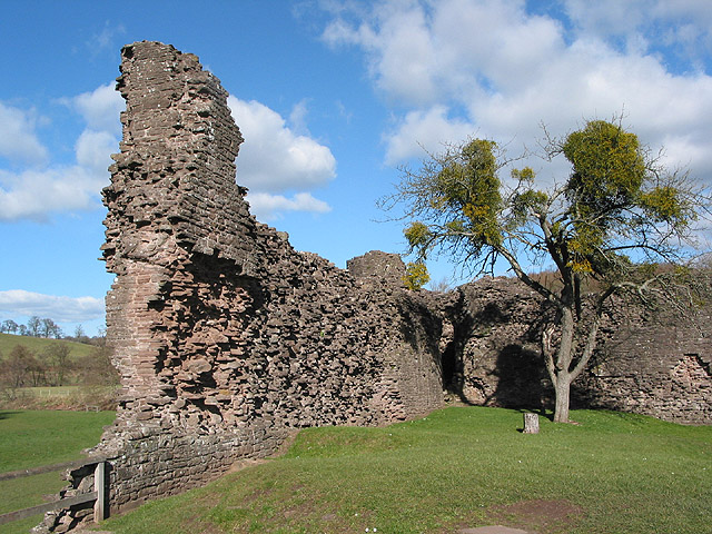 Ruined curtain wall  of Skenfrith Castle