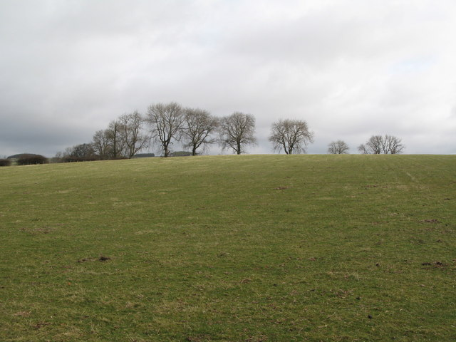 Pastures east of the Carrshield Road