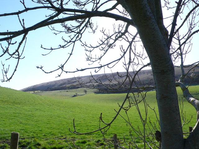 Bindon Hill Lulworth Dorset