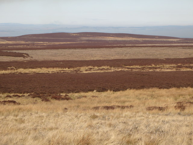 Moorland below Great Lawsley