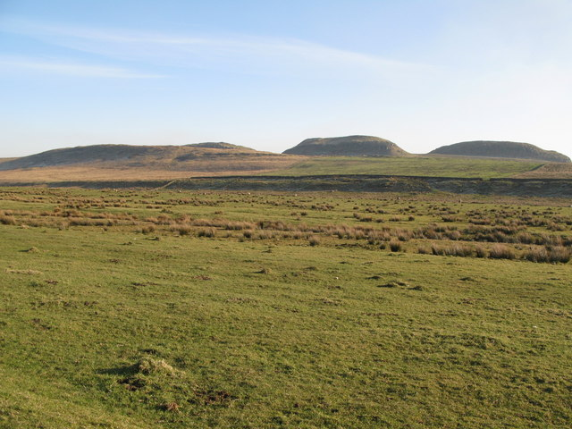 Rough pastures near High Old Shields