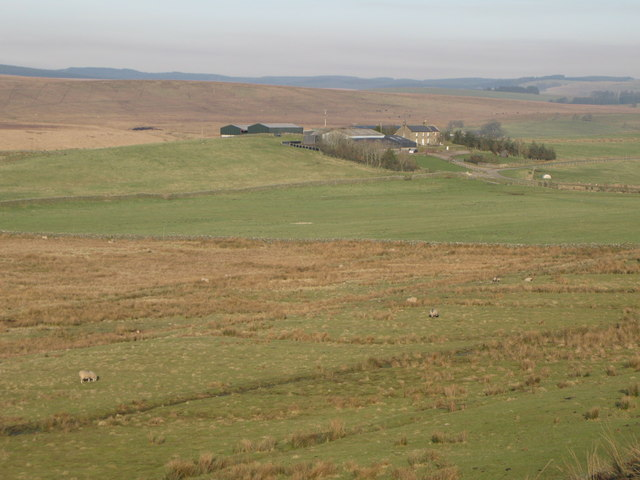 Pastures between High Old Shields and Low Tipalt