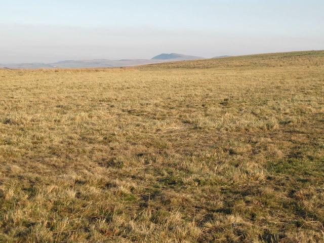 Rough pastures south of Bundle Hill