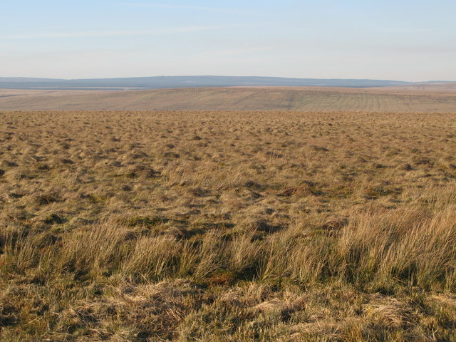 Rough pastures west of Bundle Hill