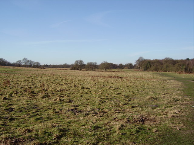 The fields at Sandy Hill