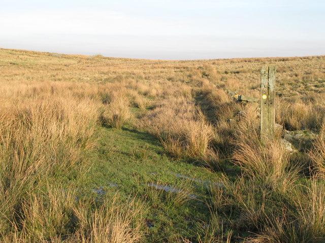 Path below Bundle Hill