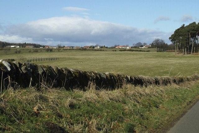 Farmland near Woodside