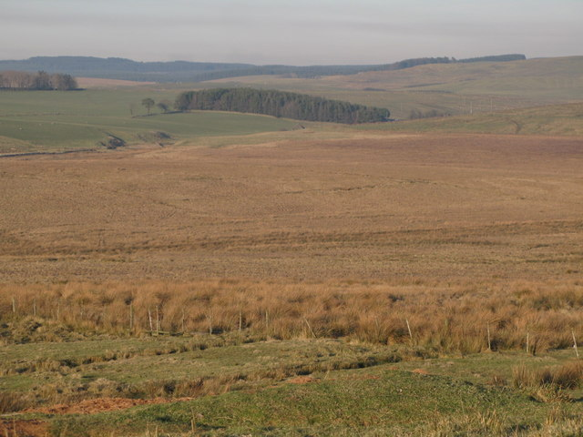 Farmland east of High Tipalt (2)