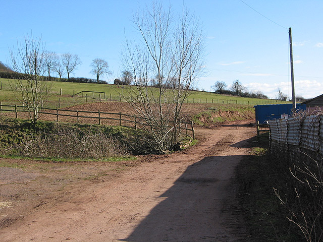 Footpath along a farm track at Welsh Newton