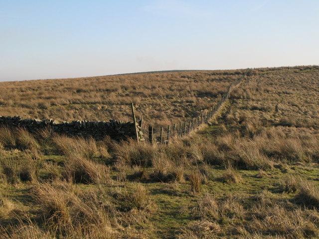 Rough pastures south of Bundle Hill (2)