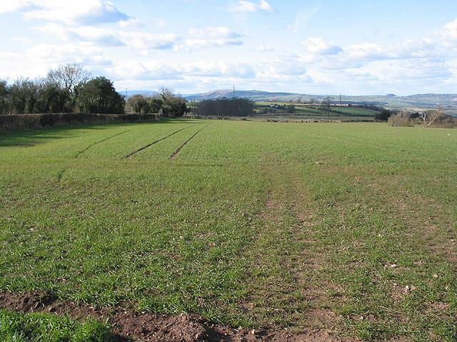 Farmland north of Welsh Newton