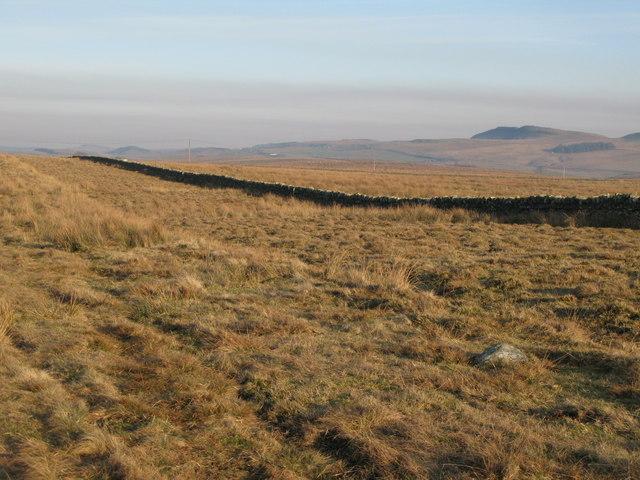 Burnhead Moss (2)