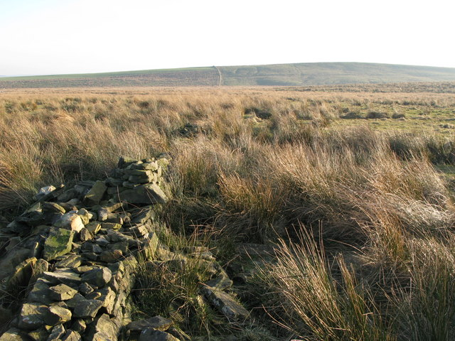 Ruined dry stone wall on Burnhead Moss