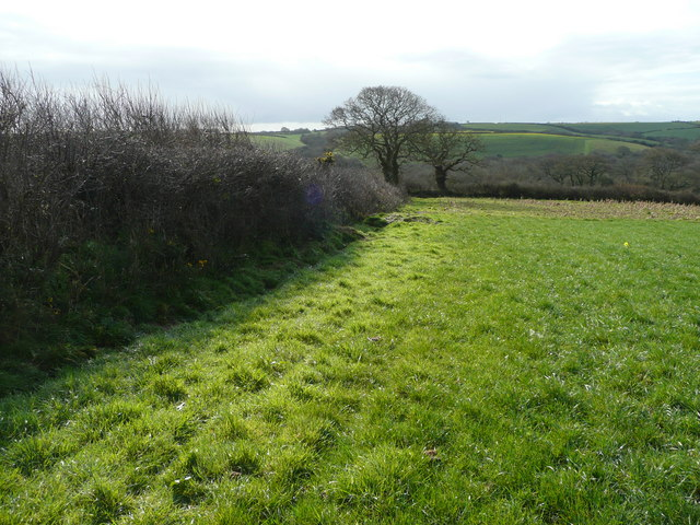 Corner of a hay field