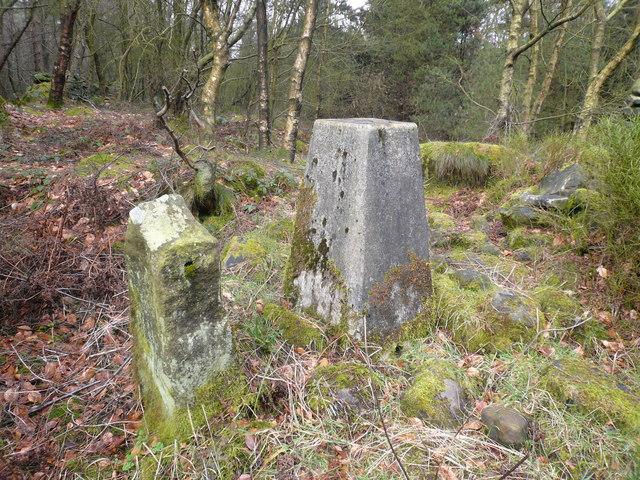 Farley Moor - Triangulation Pillar