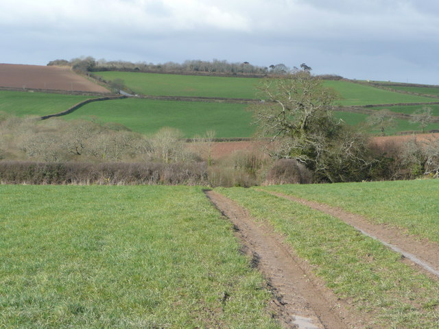 View to the south of Philleigh