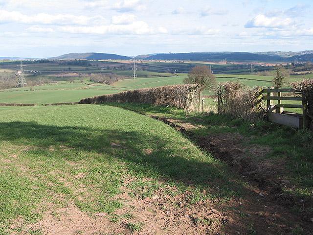 Field edge south of Llangarron