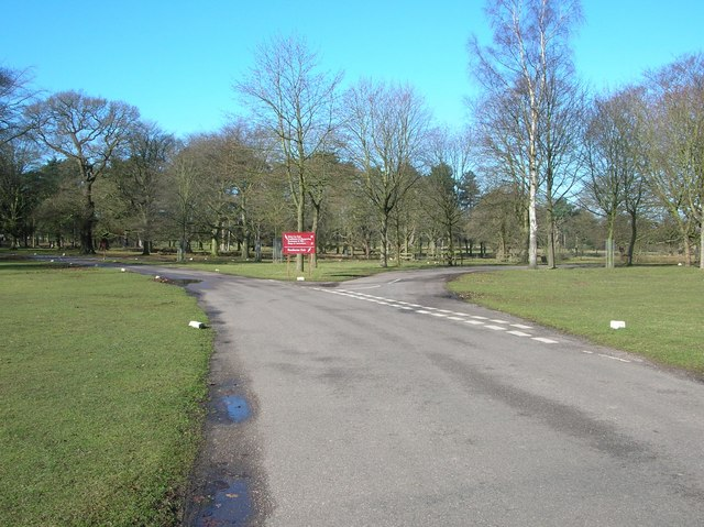Junction of drives in Tatton Park