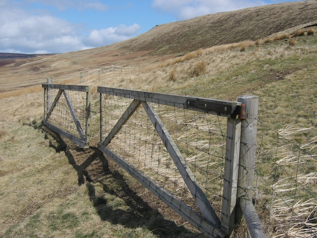 Gate at Row Top