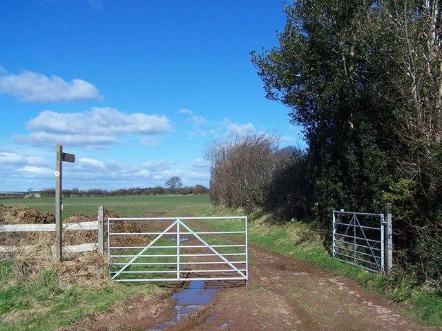 Footpath To Crafta Webb