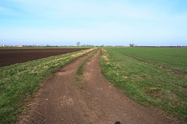Track near Ring Farm