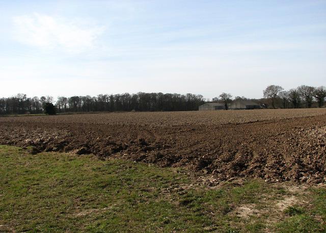 View southwest towards farm buildings
