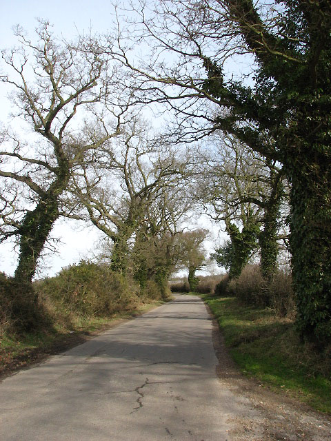 Country lane north of Sustead