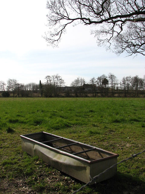 Watering trough in cattle pasture