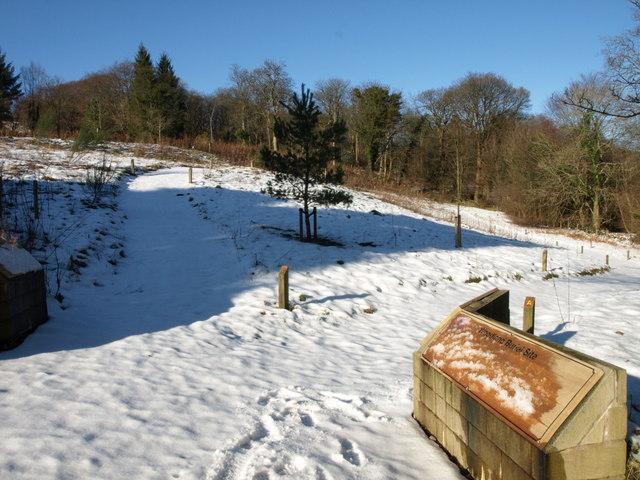 Woodland Burial Site, Lochwinnoch