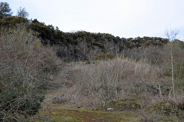 Disused Quarry at Rossie Braes