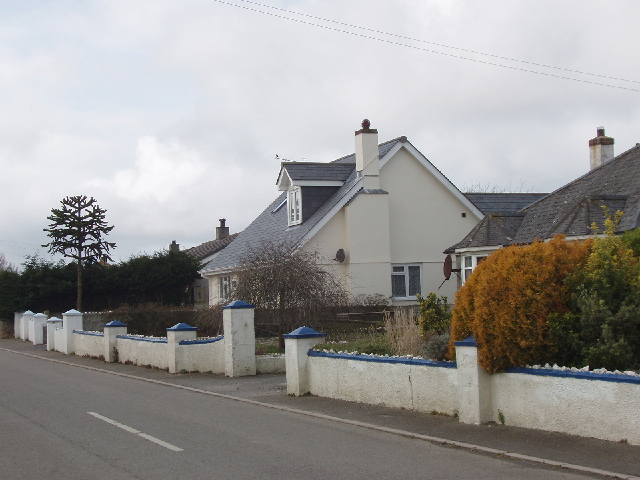 Houses in Marshgate with monkey-puzzle tree