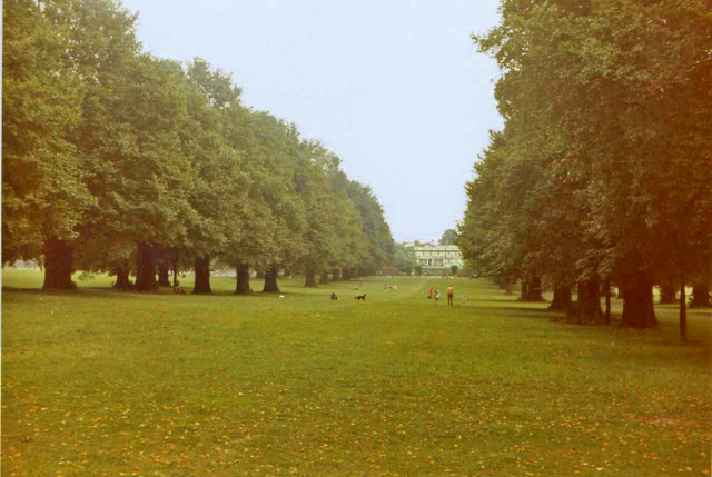 Broomfield Park with avenue of Elm Trees, London N13, taken in 1971