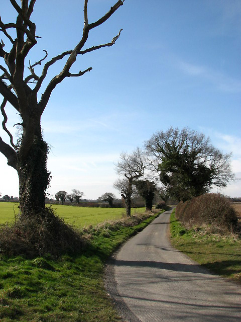 Country lane from Metton to Hanworth